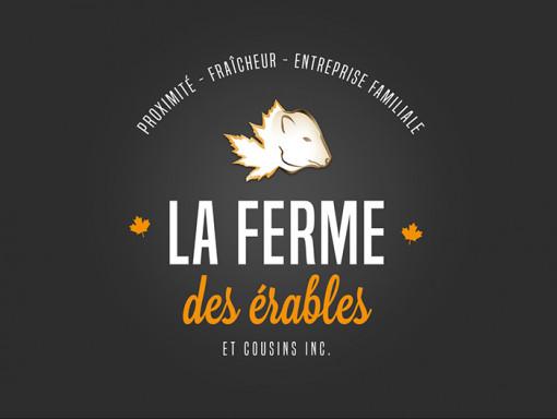Pâtés de Campagne Abricot et Érable